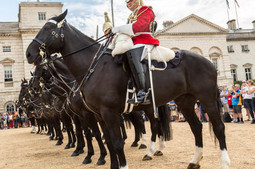 Horse-Guards-Parade-500x500.jpg